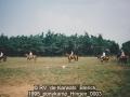 1995_ponykamp_Hingen_0003